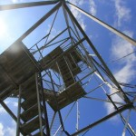 Belfry Mountain Fire Tower - From Below