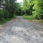 Belfry Mountain Fire Tower - Road