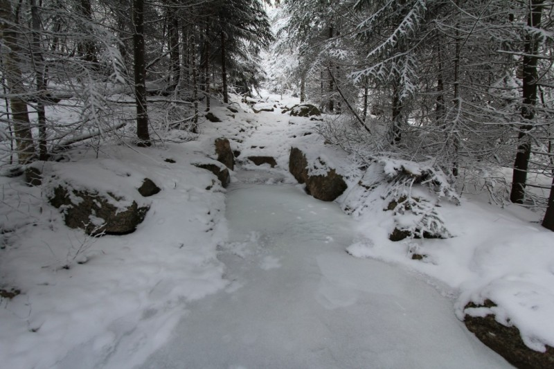 The trail is always icy in the winter. Crampons are very much necessary.