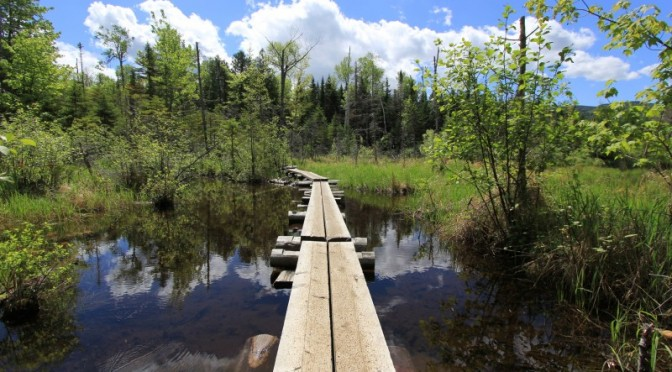 Introduction to Day Hiking – Your First Hike