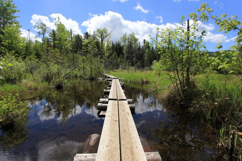 Hurricane Mountain Bridge Over Pond