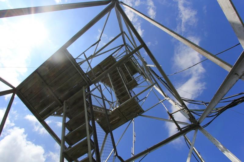 Belfry Mountain Fire Tower - From Below